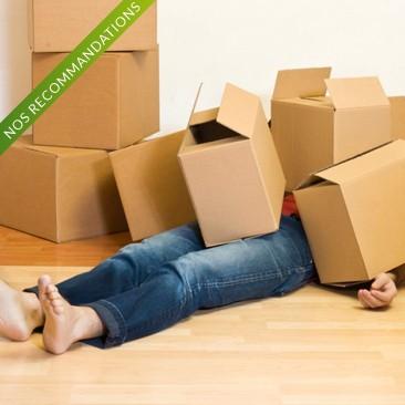 Comment bien choisir votre déménageur professionnel?